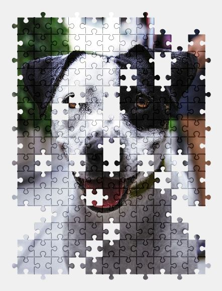 free jigsaw puzzle online animal,cute,dog,pet