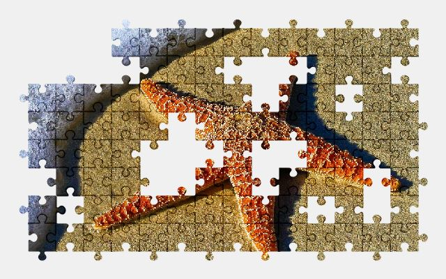 free jigsaw puzzle online beach,water,nature