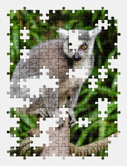 free jigsaw puzzle online animal,cute,lemur