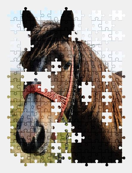 free jigsaw puzzle online animal,nature,farm,horse