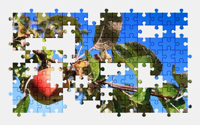 free jigsaw puzzle online apple,nature
