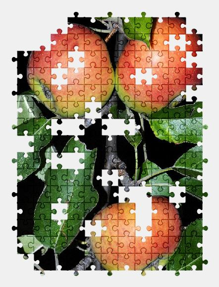free jigsaw puzzle online apple,tree,branch,leaves,fruit,red,nature