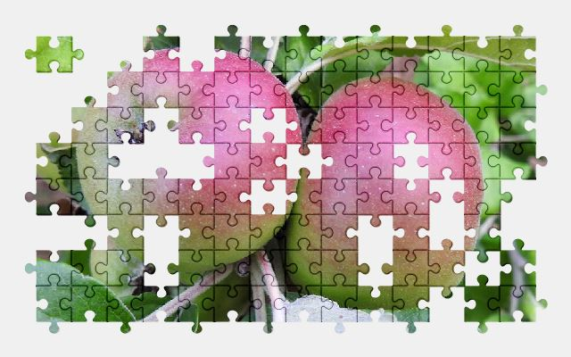 free jigsaw puzzle online apple,fruit,summer,food