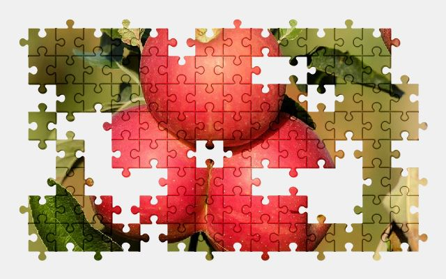 free jigsaw puzzle online apple,fruit,red,tree,autumn,nature