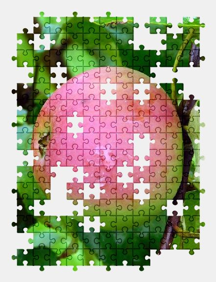 free jigsaw puzzle online apple,fruit,nature