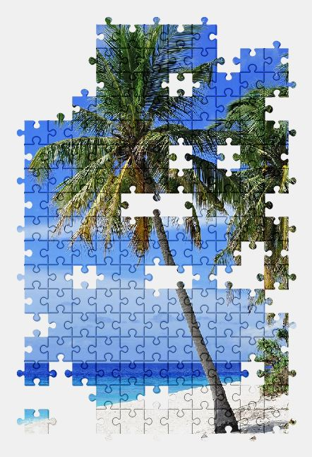 free jigsaw puzzle online beach,palm-tree,nature