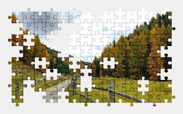 free jigsaw puzzle online autumn,forest,trees,nature,road,sky