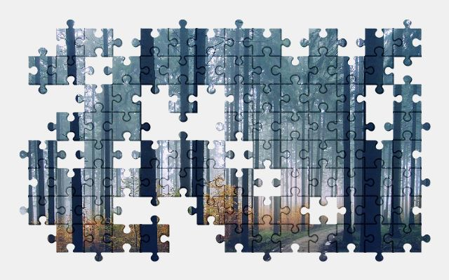free jigsaw puzzle online forest,fog,nature,trees
