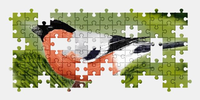 free jigsaw puzzle online bird,painting,art,animal,nature