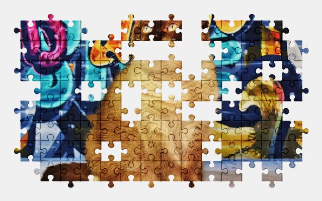 free jigsaw puzzle online british-shorthair,cat,pet,animal
