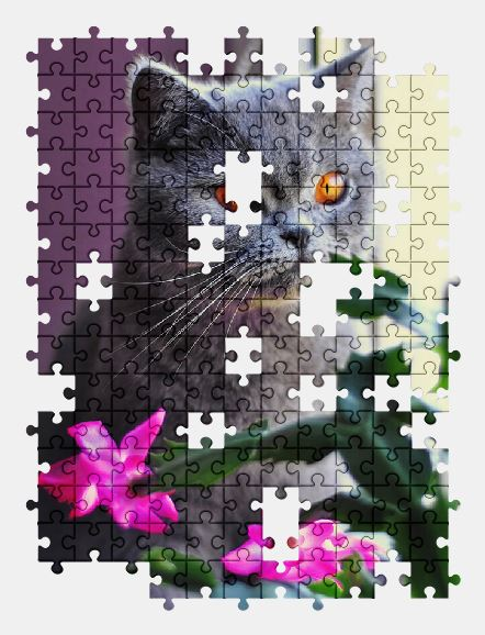 Free Cat Jig Saw Puzzle Online