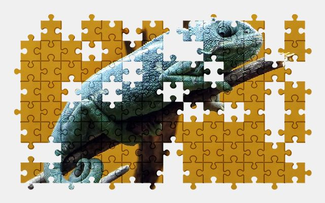 free jigsaw puzzle online chameleon,reptile,animal,nature