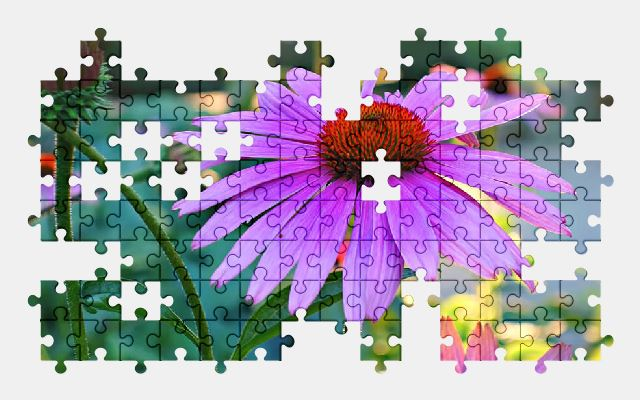 free jigsaw puzzle online flower,plant,nature