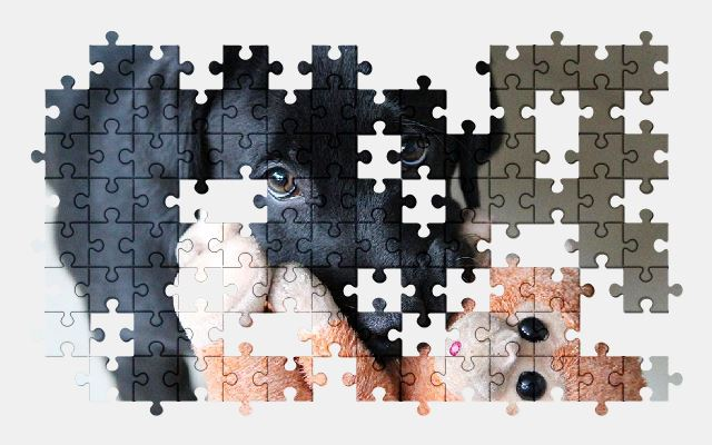 free jigsaw puzzle online dog,puppy,cute,animal,adorable