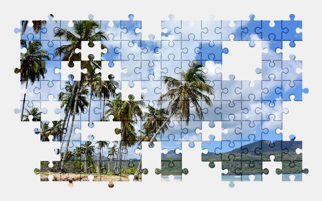 free jigsaw puzzle online beach,sea,ocean,nature,palm-tree,sky