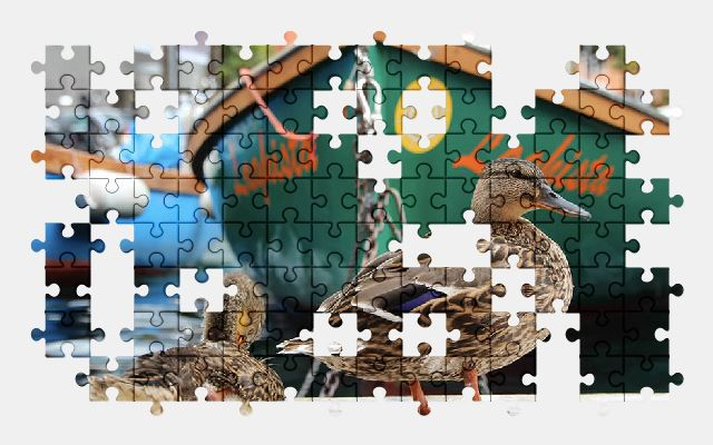 free jigsaw puzzle online duck,animal,boat