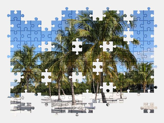 free jigsaw puzzle online florida,ocean,beach,travel,sea