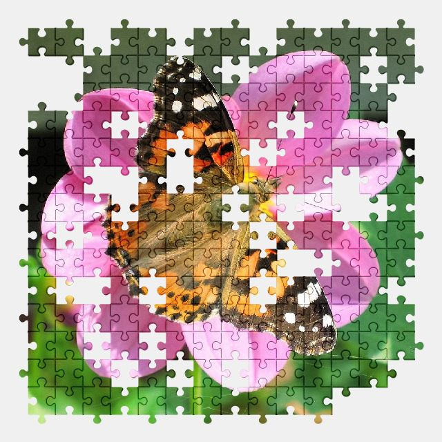 free jigsaw puzzle online flower,butterfly,nature