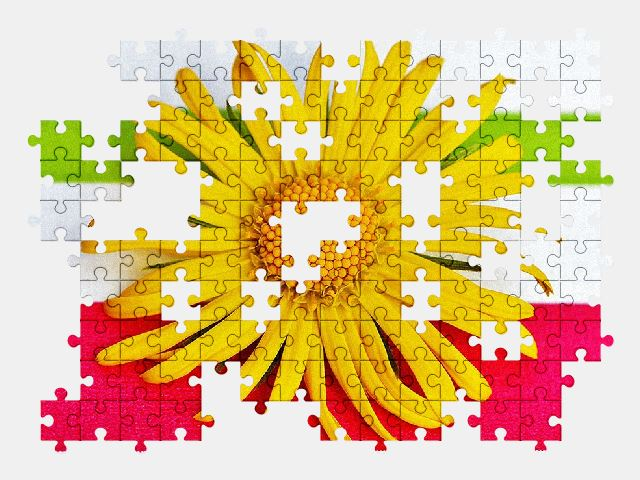 free jigsaw puzzle online flower,spring