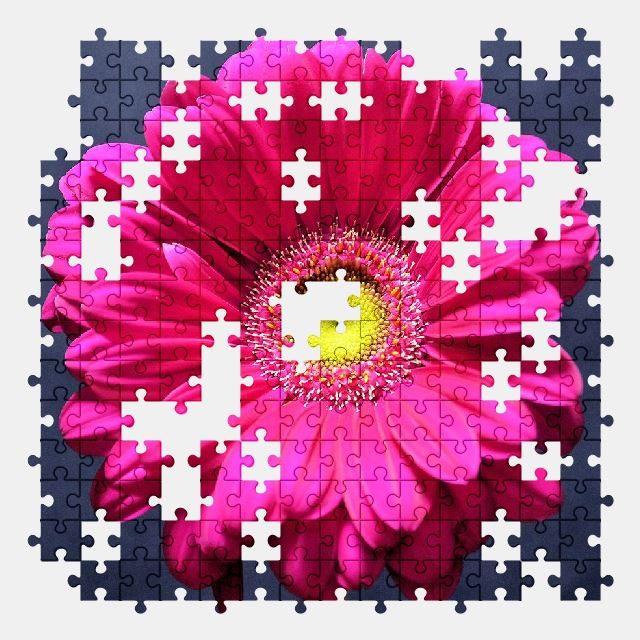 free jigsaw puzzle online flower,nature,plant