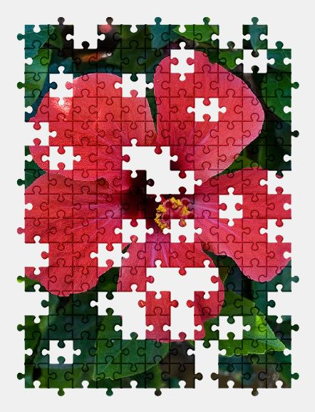 free jigsaw puzzle online hibiscus,flower,red,green,bloom,nature