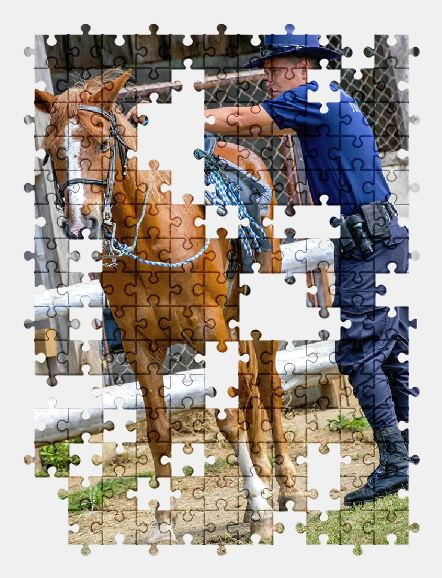 free jigsaw puzzle online horse,stable