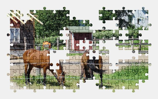 free jigsaw puzzle online horses,animal,finland