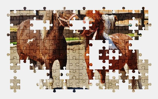 free jigsaw puzzle online horses,play,funny,animal,pony,nature