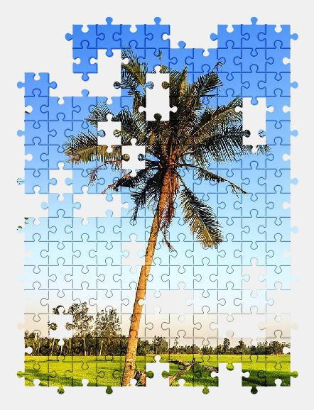 free jigsaw puzzle online palm-tree,palm,nature