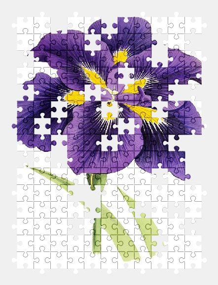 free jigsaw puzzle online lily,flower,plant,blossom,bloom,vintage