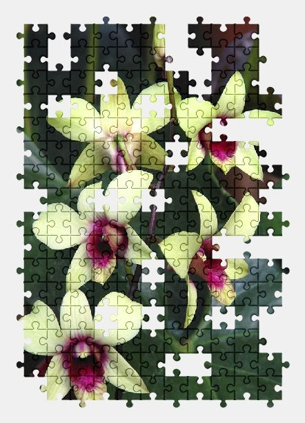 free jigsaw puzzle online flower,nature