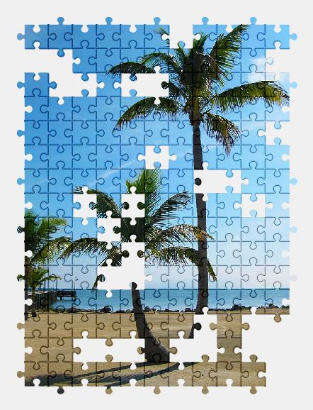 free jigsaw puzzle online palm-tree,sunny,palm,tree,tropical,ocean,summer,nature