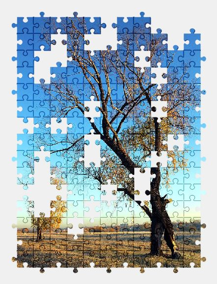 free jigsaw puzzle online sky,tree,sunny,autumn,countryside,nature