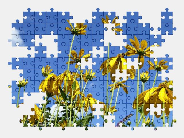 free jigsaw puzzle online summer,yellow,flower,sky,nature