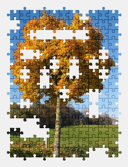 free jigsaw puzzle online tree,autumn,nature
