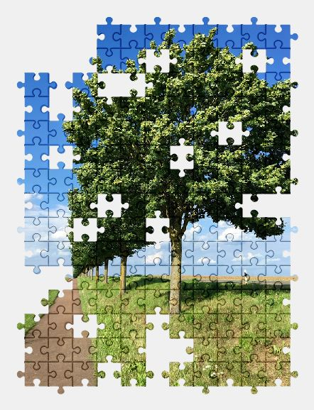 free jigsaw puzzle online tree,nature,summer,landscape,sky