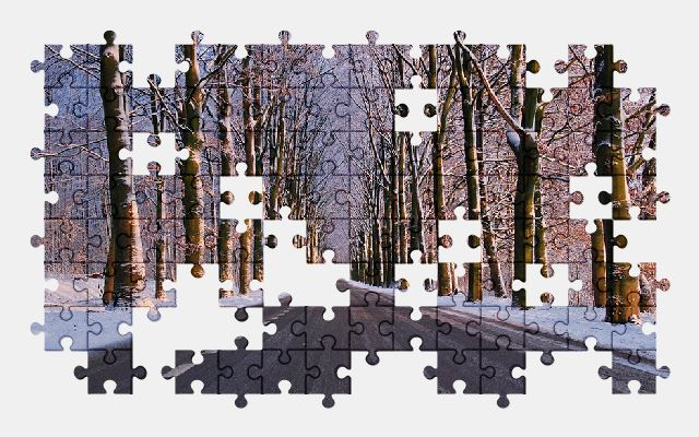 free jigsaw puzzle online winter,road,snow,nature
