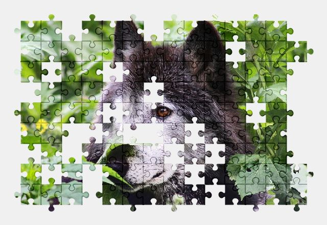 74527a925030 Jigsaw Puzzles Free